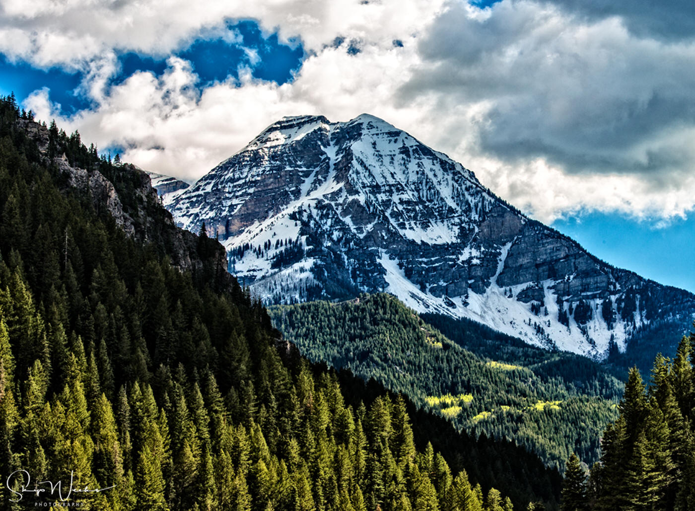 Back of Timp from Tibble Fork by Skip Weeks